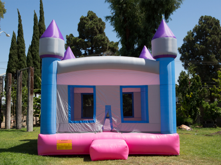 Pink Castle Bouncer